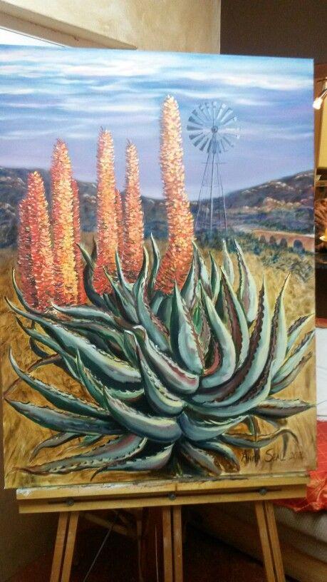 Aloe in Cradock