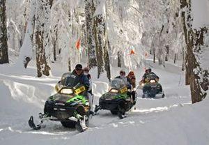 Vive media jornada de aventura en la nieve en Lleida