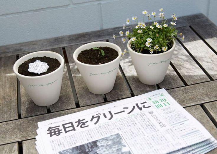 Le Mainichi, l'un des plus grands quotidiens japonais, fleurit quand on le plante