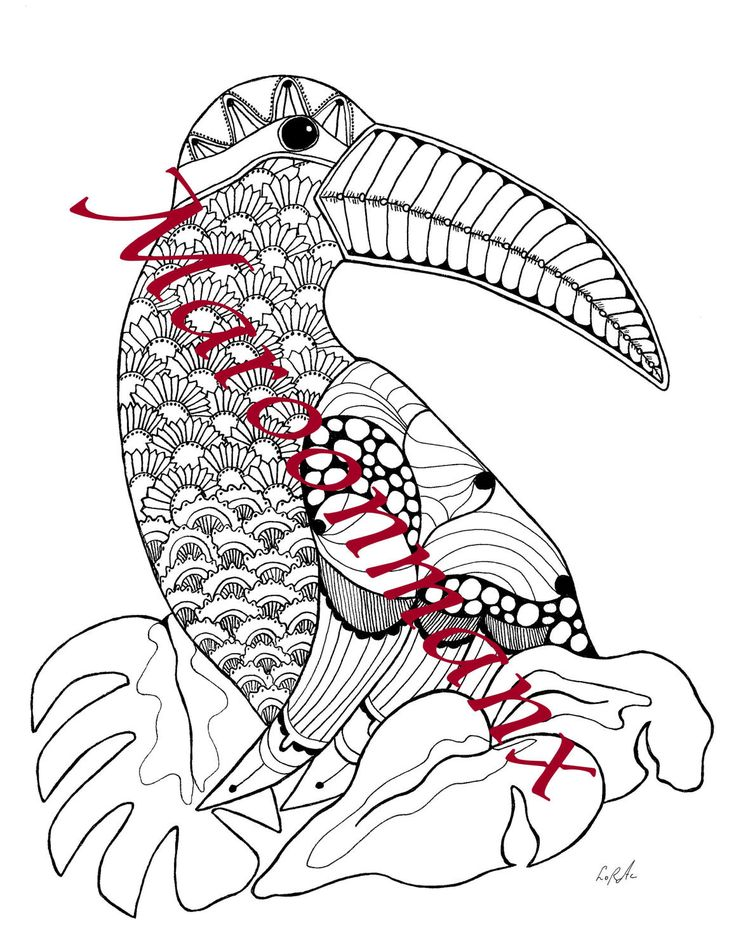 Toucan Tropical Bird Adult Coloring Page Downloadable Printable Gift Wall Art By Maroonmanx On Etsy