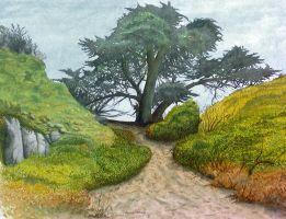 Landscape by jvandeperre