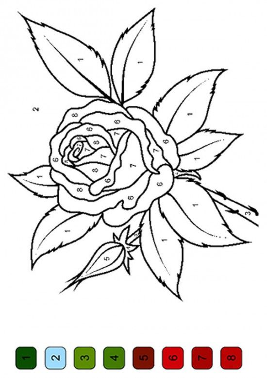 The color by number flower coloring pages 550x778 picture for Color by number flower coloring pages