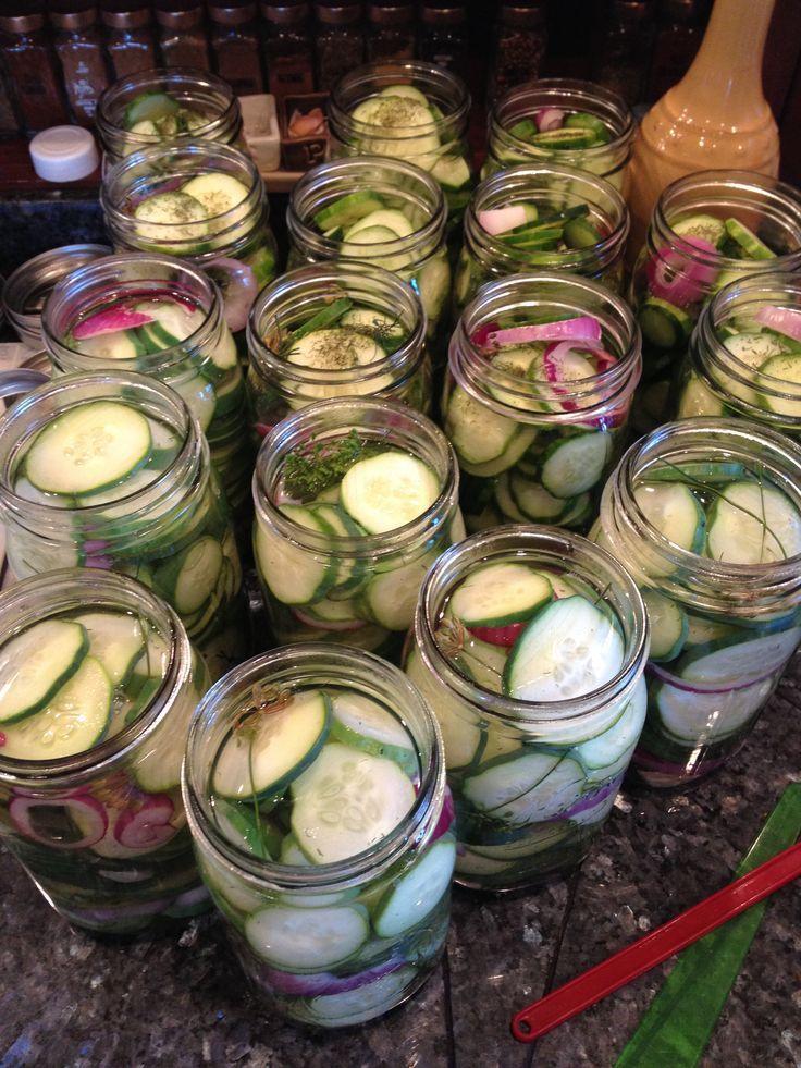 Crisp garlic dill pickles. Easy canning recipe.: