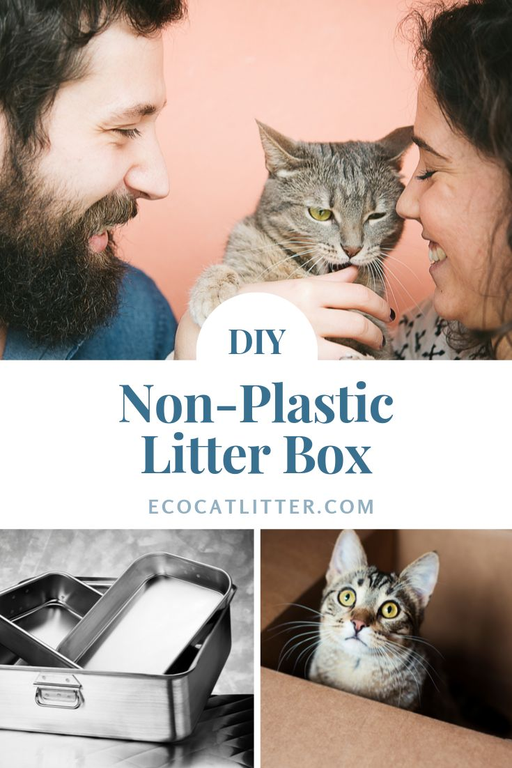 Eco Friendly Litter Box Sustainable Metal And Bamboo Cat