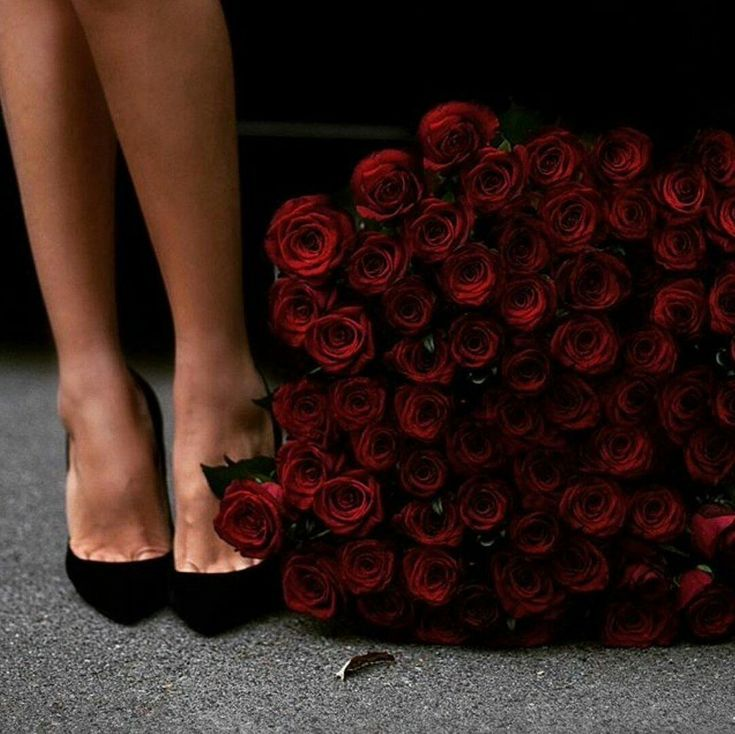 Картинки цветов на коленях