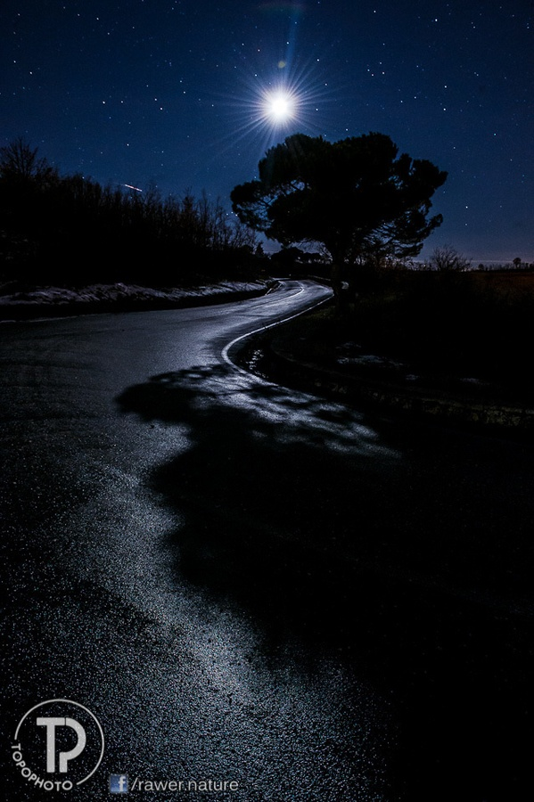 E.T.  by Topo Photo  http://www.facebook.com/rawer.nature