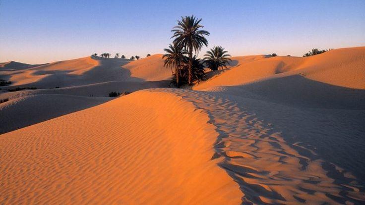 Tunisie, Tozeur