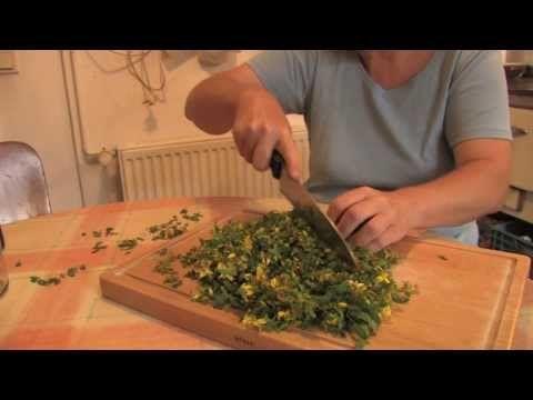 Johanniskraut-Öl selber machen und seine Wirkungen | Kräutergarten Magazin