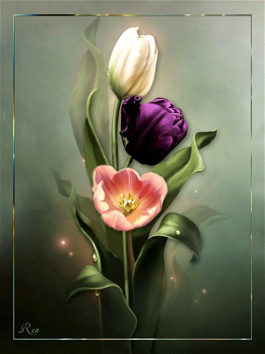 Картинки обнаженными, анимация тюльпаны картинки