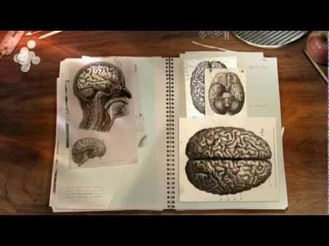 BBC Documentary - Horizon: The Creative Brain How Insight Works