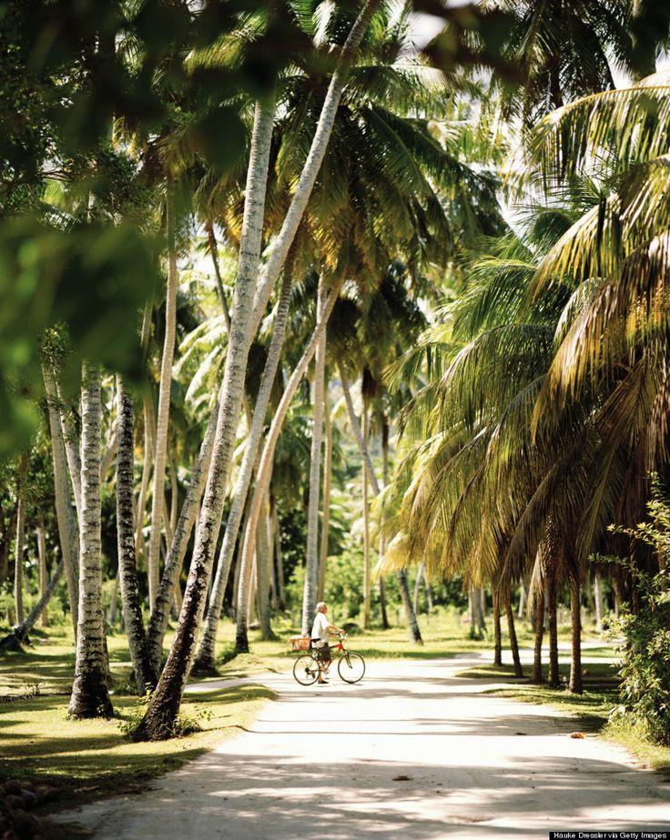 La Digue Island is heaven on earth