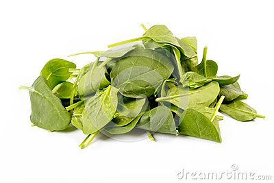 Fresh spinach isolated on the white background