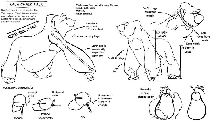 On character design and development, working out body movements. Disney's Tarzan (1999) Early sketch By Glen Keane w/ other artists Image source:http://livlily.blogspot.co.uk/2011/01/tarzan-first-sketshes-tarzan-anathomy.html