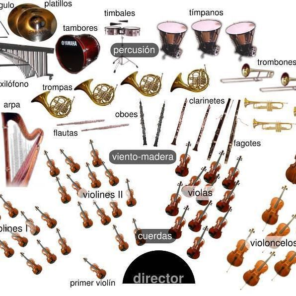 Musical instruments. #musical #musically #orquesta #orchestra #sinfonica #symphonic #symphonica #instrumentos #instruments #art #arte #musica #creative #love #like4like #followforfollow #photo