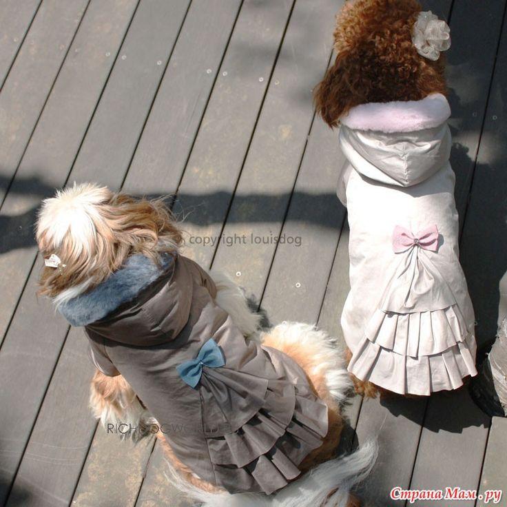 Пальто для собаки + выкройка