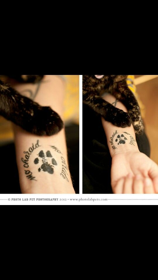 Love this as a memorial tattoo for your pet. Except real paw print then name and dates around it. Love my puppy tons