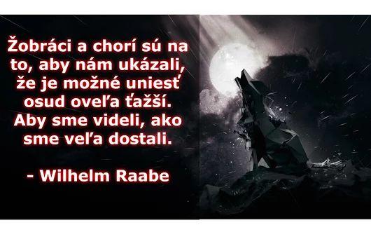 Žobráci a chorí sú na to, aby nám ukázali, že je možné uniesť osud oveľa ťažší. Aby sme videli, ako sme veľa dostali. -- Wilhelm Raabe