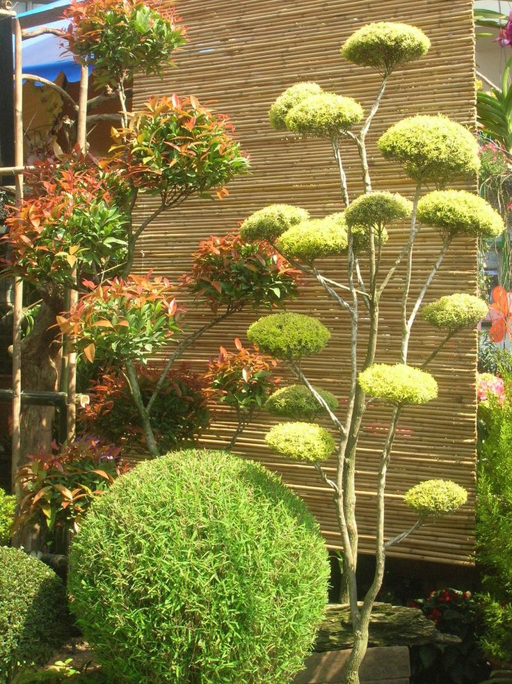 Les 82 meilleures images du tableau jardin zen sur for Amenagement jardin oriental