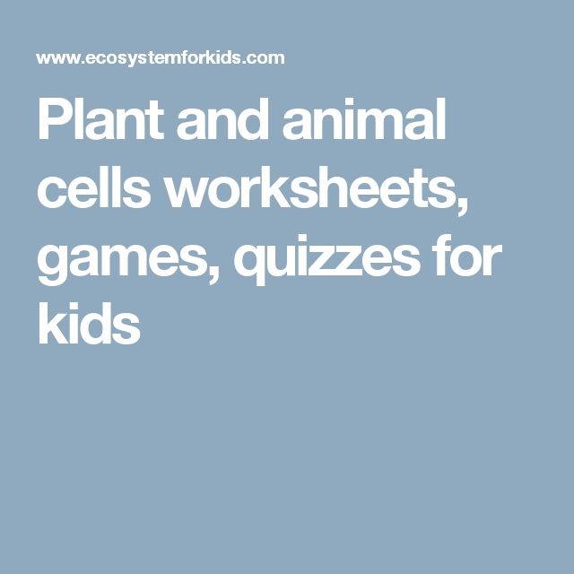 Plant and animal cells worksheets, games, quizzes for kids