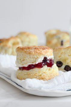 Meyer Lemon & Blueberry Cream Scones (recipe)