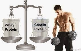Difference Between Casein Powder and Protein Powder ,Protein is an important supplement for all bodybuilders. When you want to build your muscle quickly, you need to consume the best supplement for supporting your muscle growth. You also need to know the difference between casein powder and protein powder.