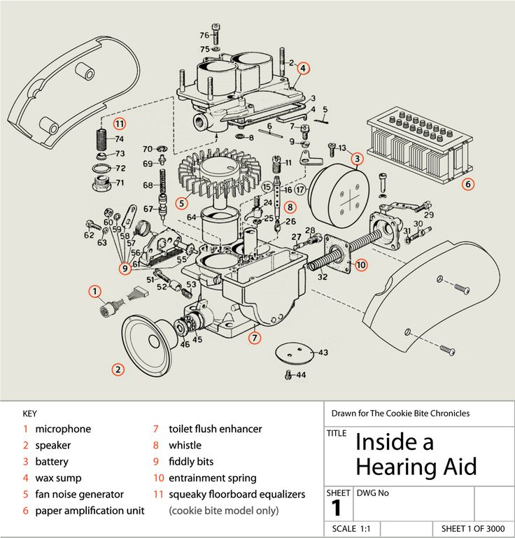 17 best study tools images on pinterest pathways, neuroscience In the Ear Hearing Aid Diagram hearing aid wiring diagram