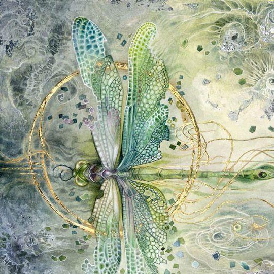 Shadowscapes - Stephanie Pui-Mun Law