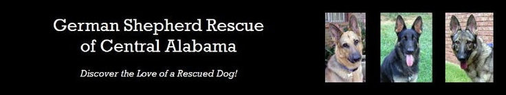 German Shepherd Rescue of Central Alabama
