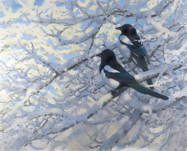 Magpies, 2007 lj