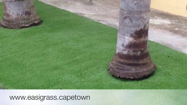 5 Important Elements when Installing Artificial Grass