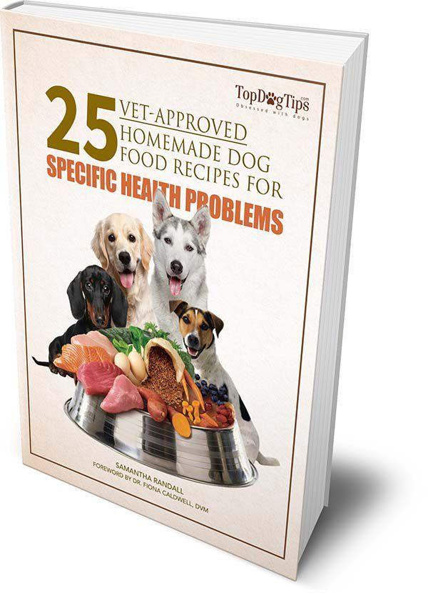 Ebook 25 Vet Approved Homemade Dog Food Recipes Dog Food