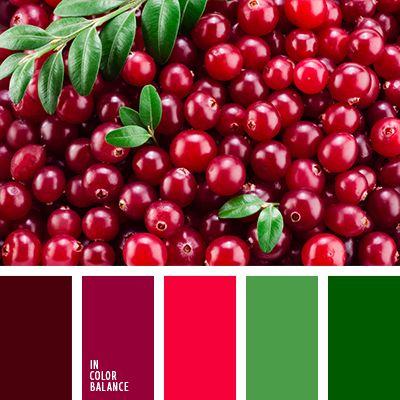 Цветовая палитра №2537 | IN COLOR BALANCE