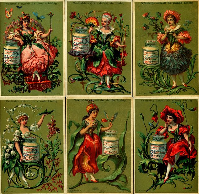 Liebig Tradecards Set ~ S133 Flower Girls, 1883