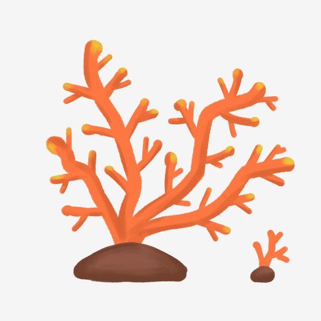 ثنية للشراع المرجان مرجان عشب مائي أعشاب بحرية الأعشاب البحرية الشعاب المرجانية مرجاني Png وملف Psd للتحميل مجانا Coral Cartoon