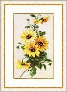 Cross-stitch kit Zolotoe Runo Sunflower