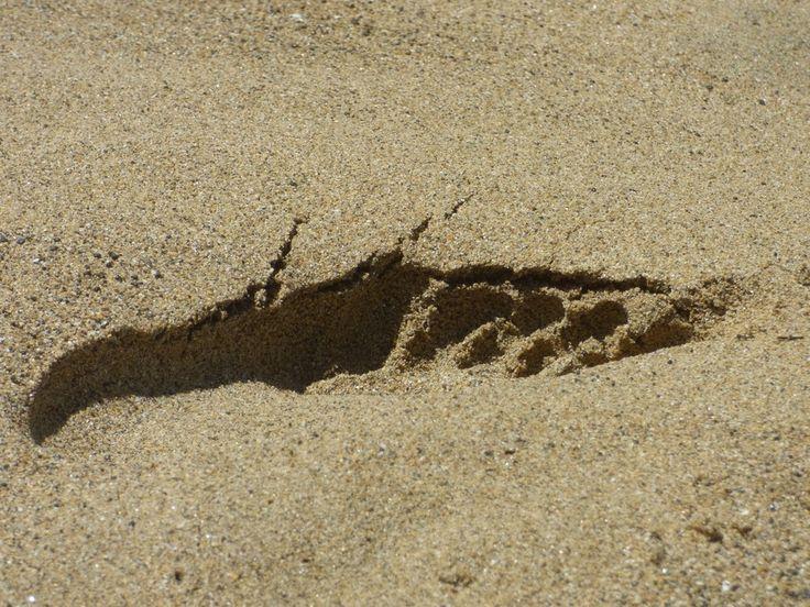 'Foot print @ the beach'