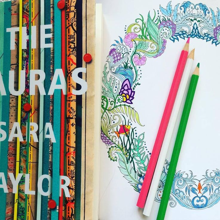 I picked up The Lauras without knowing what to expect. I hadn't read anything by Sara Taylor (author of The Shore) and knew nothing about her or her style.