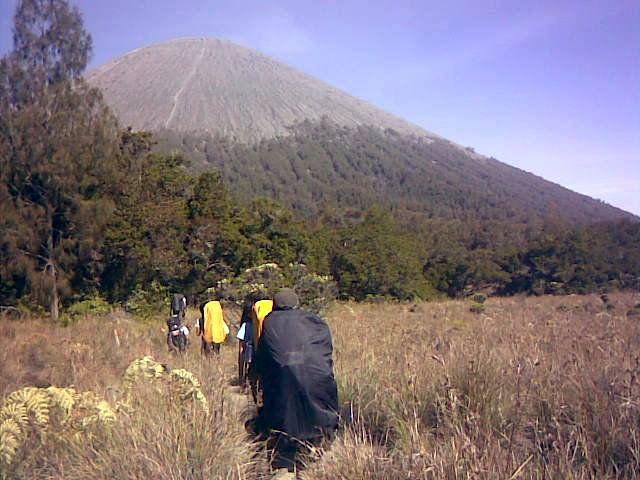 Jambangan, Mt.Semeru, Indonesia