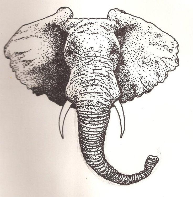 how to draw an elephant head | Elephant Head by ~Scheinberg on deviantART