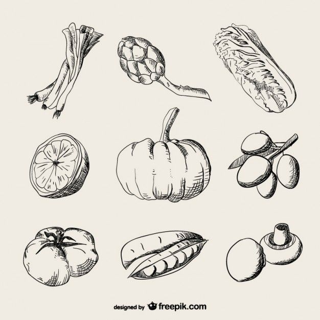 Vegetable vectors photos and psd files