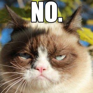 Grumpy Cat no Meme Tumblr | Funny Stuff | Pinterest | Cats ...