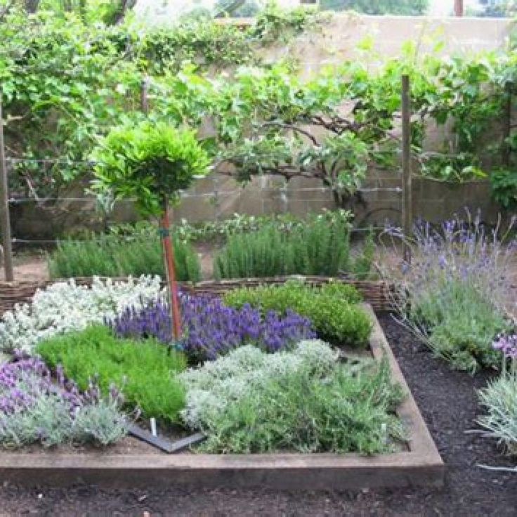 Easy Landscaping Ideas You Can Try: 50 Easy Herb Garden Ideas To Try Herb Gardening Designs No