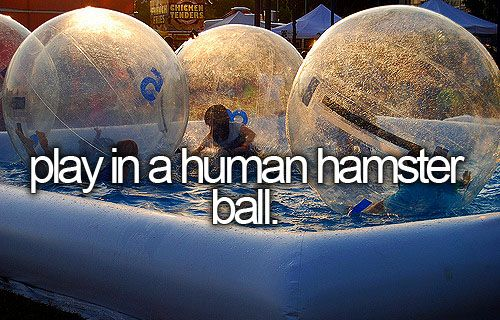 play in a human hamster ball. @Jennifer Milsaps L Milsaps L Milsaps. Been there done that lol