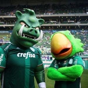 Palmeiras oficializa o porco como mascote e o apresenta para torcida