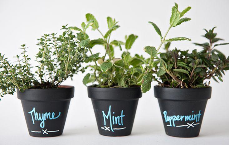 #DIY Chalkboard planter pots Endlessly Creative   #darbysmart