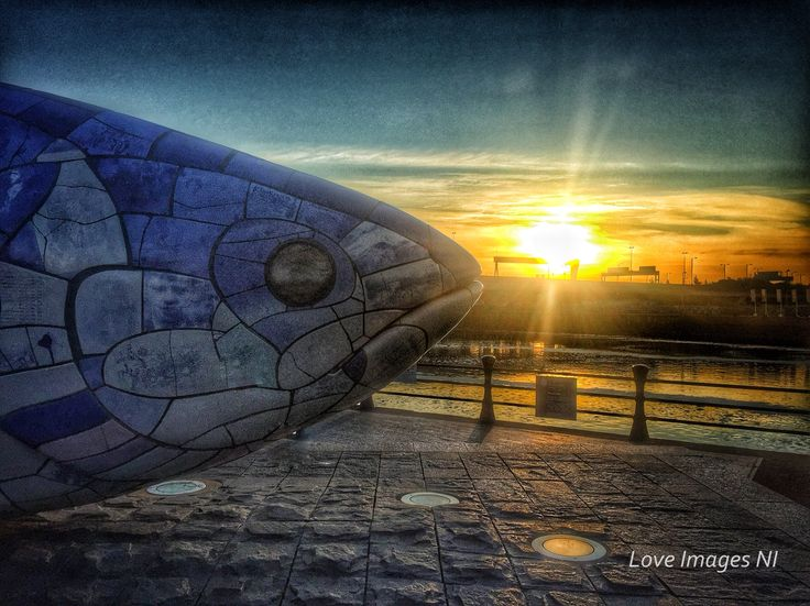 """""""The Big Fish in Blue - Belfast""""  The Big Fish is a ceramic printed mosaic sculpture of a salmon, 10m long from nose to tail, on Donegall Quay, Belfast. Designed by local multi media artist John Kindness, the Fish stands proudly where the River Farset flows into the River Lagan. The beautiful blue """"scales"""" depict the history of the city of   Belfast from Tudor times to modern day via newspaper print and images."""