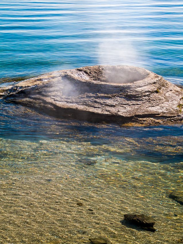 17 best images about yellowstone national park on for Yellowstone lake fishing