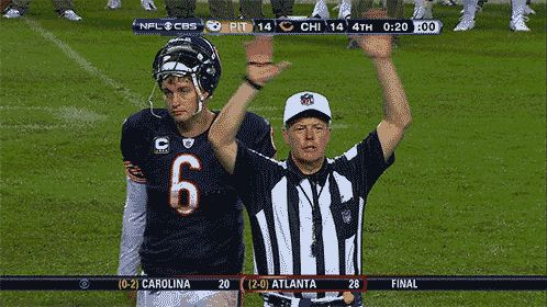 ha ha, perfect, Jay Cutler gets his clock cleaned by a ref! walks into it himself, figures!