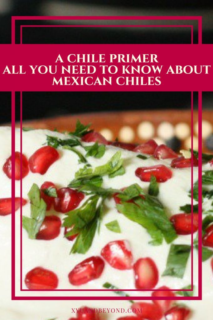Mexican chiles a guide to using Mexican chiles in cooking and for when you are traveling #Mexico #chiles #chillies #Mexicanfood #travelforfood via @https://www.pinterest.com/xyuandbeyond/
