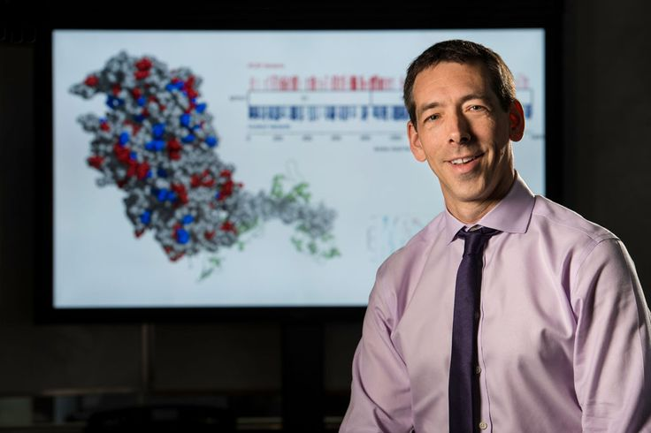 Researchers use long-read genome sequencing for first time in a patient
